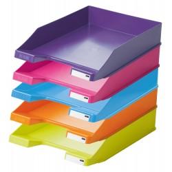 Tava documente Han Standard Trend Colours