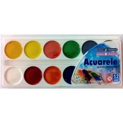 Acuarele 12 culori Colibri
