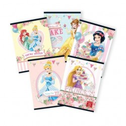 Caiet A5 24 file Tip I Princess