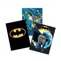 Caiet A5 24 file Tip II Batman