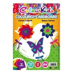 Carton A4 160g 120 coli 12 culori Pigna