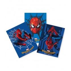 Coperti caiet A5 Spiderman